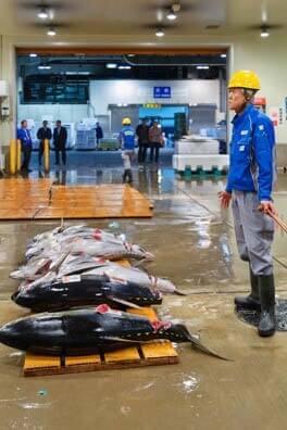 Tokyo, Relocation of Tokyo's Biggest Fish Market