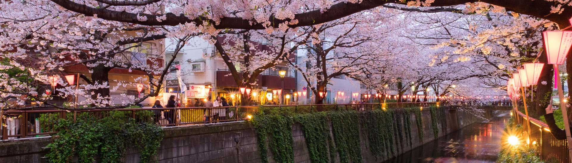Toyko, Image of Spring Glamour